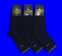 Золотая игла Термо-носки мужские черные с-1010-3 внутри махра