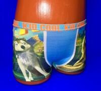 Детские трусы для мальчиков COOL KID волк арт. 71-72 (71-73)
