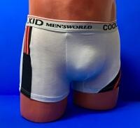 Подростковые трусы-боксеры для мальчиков COOL KID арт.W 6951