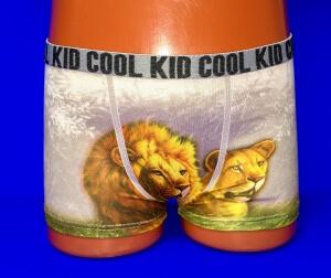 Детские трусы  для мальчиков COOL KID арт. 71-62